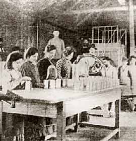 Production of canned foods at the JCS nursery. A photograph dated 1903